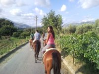 Excursions in the saddle