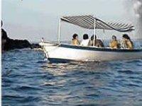 days of fun in the sea