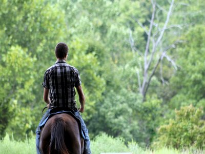 Olang Valdaora Passeggiate a Cavallo