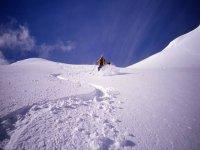 Off-piste in the Alps