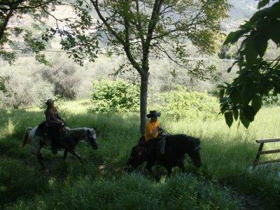 Centro Equestre Val Nervia