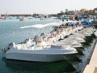 Le nostre imbarcazioni ti aspettano