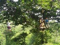 Tra gli alberi come Tarzan!