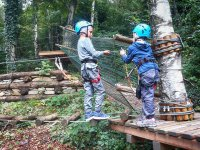 In equilibrio sui tronchi