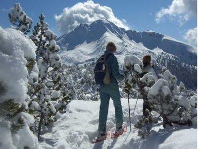 Guide Alpine Val di Fiemme Ciaspole