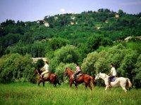 Equitazione immersi nella natura