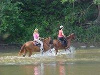 Fantastici trekking a cavallo