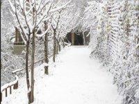 paesaggio incantato con la neve