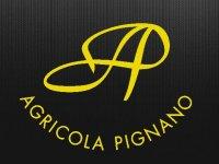 Azienda Agricola Pignano