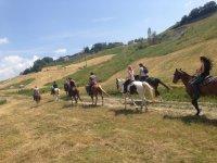 Amici a cavallo