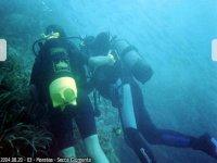 Immersioni con esperti divers