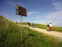 escursioni lungo la via francigena