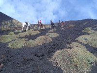 horseback riding on Etna