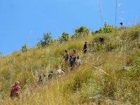 naturalistic trekking