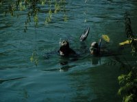 Immersioni fiumi e laghi