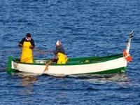 Uscite di pesca in Liguria