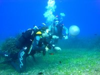 Dive medusa