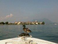 Giornate speciali in barca