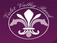 Violet Valley News