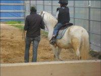 Lezioni equitazione per bambini