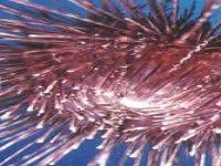 artificial explosions