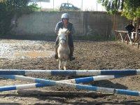 Equitazione a Giardini Naxsos