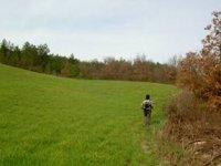 Trekking nel verde