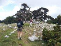 Trekking nel Parco Nazionale del Pollino