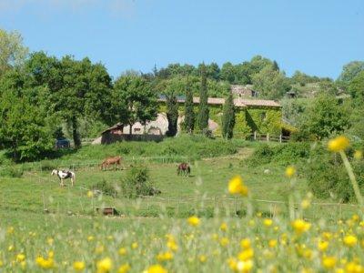 Agriturismo 1giorno pens.completa Castel Azzara