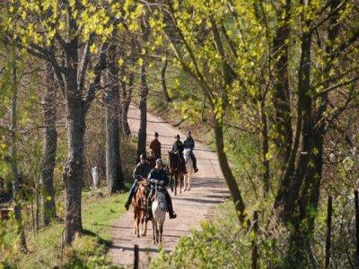 Pensione completa+ 2 ore equitazione Castel Azzara