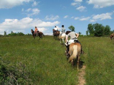 Passeggiata a cavallo di 2 ore a Castel Azzara