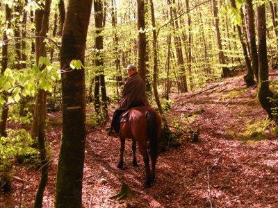 Una settimana a cavallo Castel Azzara (Toscana)