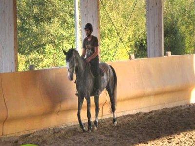Centro Ippico Preval Passeggiate a Cavallo