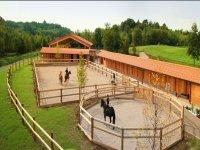 riding school in the Collio Goriziano