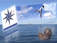 Brokers & Charter noleggio barche