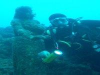 Vicino statua sottomarina