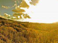 Paesaggio toscano al tramonto