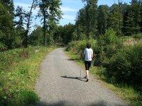 Camminata nella natura