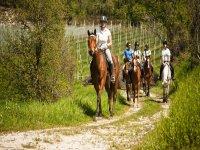 equitazione di campagna nel bresciano