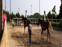 lezioni e passeggiate equestri in agriturismo nel bresciano
