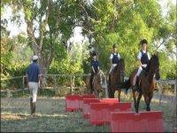 Amare l equitazione fin da piccoli