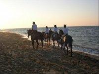pratica dell equitazione di campagna per allievi