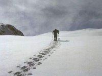 Snowshoeing in Val di Fiemme