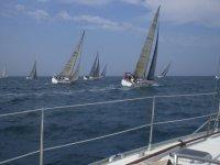 Scuola di vela e regate