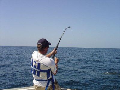 Pizzichella  Pesca