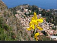 Scopri la Sicilia with noi