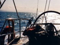 Sailing school with experts