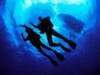 Hi Diver