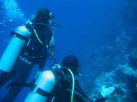 Corsi e immersioni diving