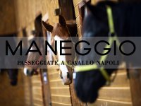Passeggiate a cavallo Napoli